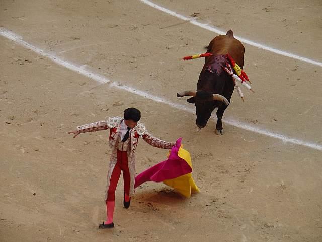 David Navalon Jaro de sangre de toro y plata fue largamente ovacionao en la brega a Escorao, toro negro mulato bragao de 585 kilos nacido en diciembre de 2004 en la ganaderia Salvador Domecq lidiao el 4º la tarde del 9 de mayo de 2009 en la plaza las Ventas de Madrid