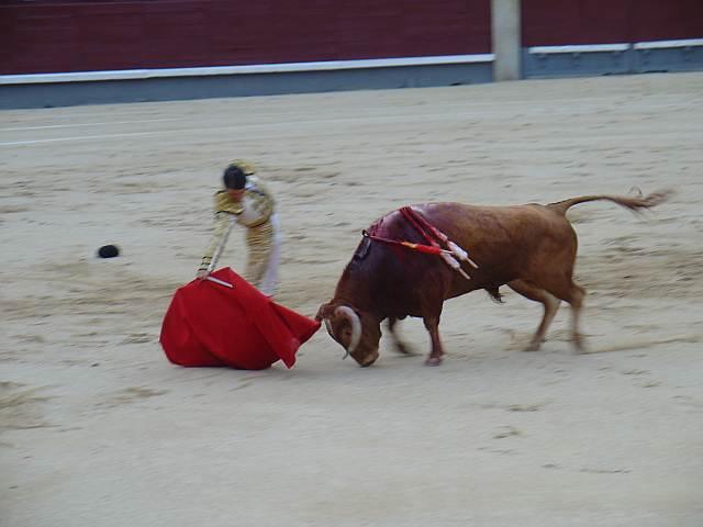 torero Javier Herrero toros ganaderias Molina Alcurrucen plaza Ventas Madrid 19 julio 2 agosto 2.009